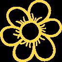 garden-daisy